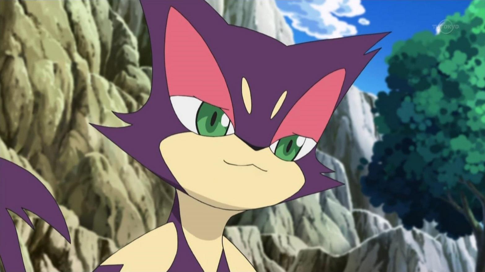 Purrloin was Misha's Pokémon and were very close.
