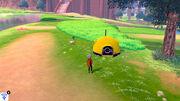 Pokémon Camp Gameplay