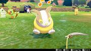 Pokémon Camp Poké Toy