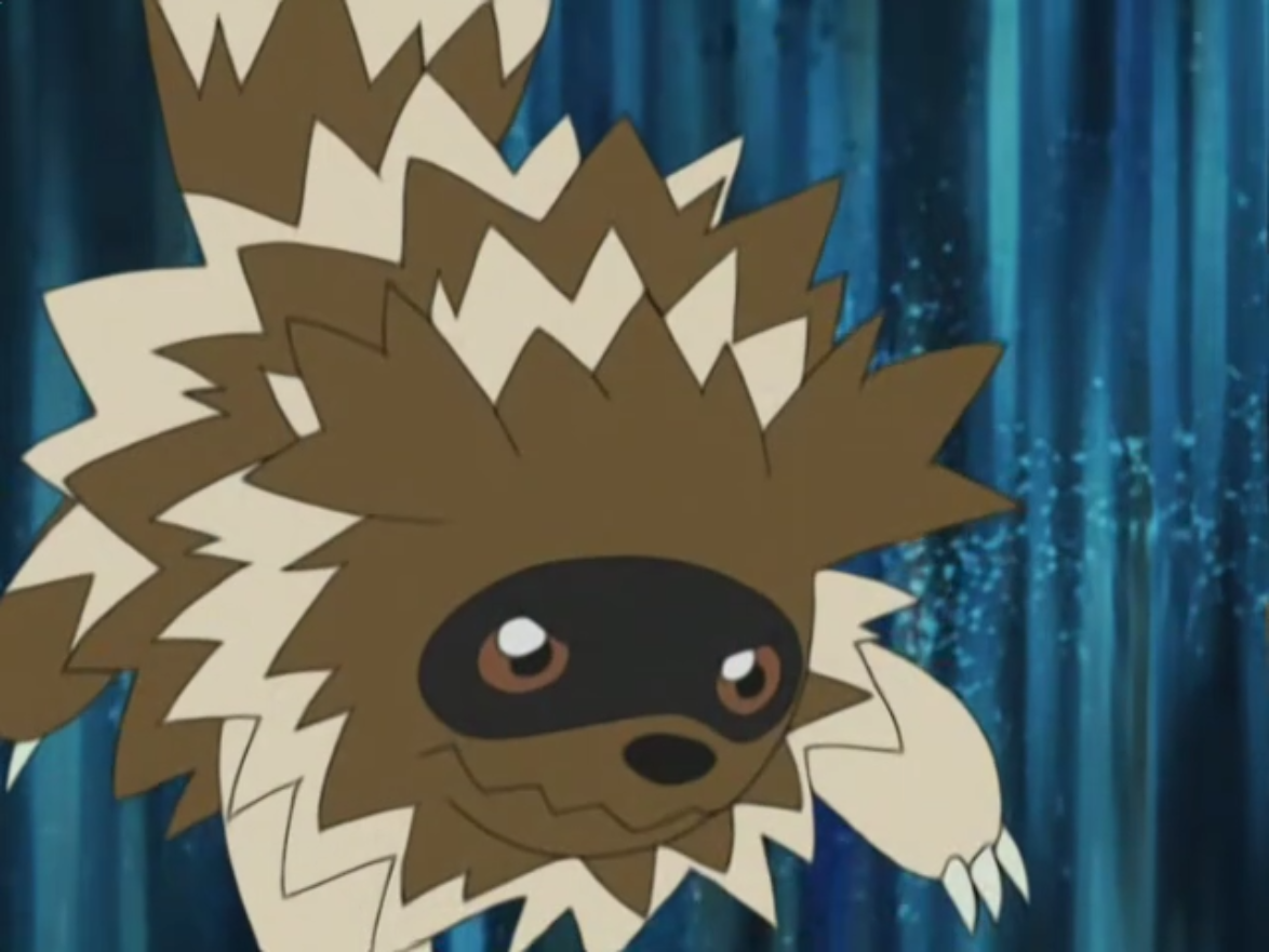 Victor used Zigzagoon in a battle against Brock and his Mudkip.