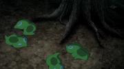 Zygarde Cell anime