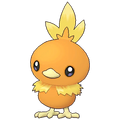 255Torchic Masters