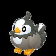 396Starly Pokémon HOME