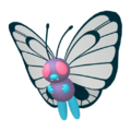 012Butterfree Female Pokémon HOME
