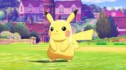 Pokemon Sword & Shield Pikachu in Game