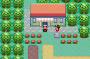 Route 104 - Pretty Petal Flower Shop (Gen III)