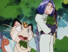 James and Meowth