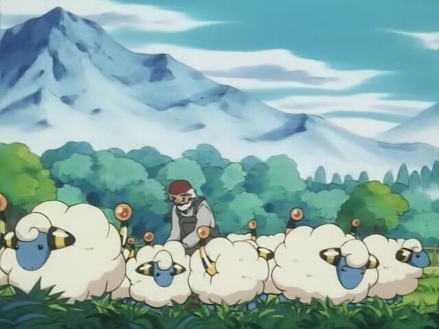 The farmer owned a herd of Mareep.