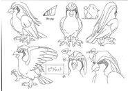 Pidgeot concept art