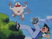 Ash losing to Mankey