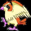 016Pidgey OS anime 3