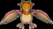 021Spearow Pokémon PokéPark