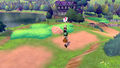 Pokemon Sword & Shield Gameplay 11