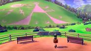 Pokemon Sword & Shield Gameplay 3