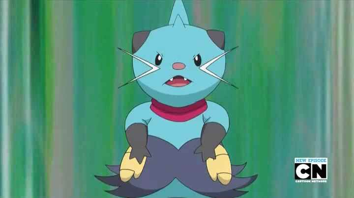 Halsey had a Dewott, who was used in putting out fires.