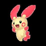 311Plusle Pokémon HOME