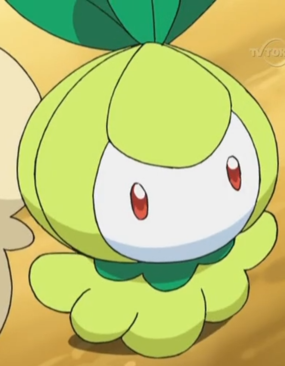 Petilil was one of the Pokémon located at the Nursery and is taken care of by Layla.