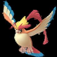 Pidgeot Mega-GO