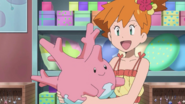 Misty and Corsola