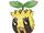 Sunkern (Pokémon)