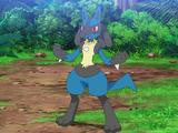 Ash's Lucario (Journeys Remake)