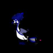2021 05 05 0q6 Kleki