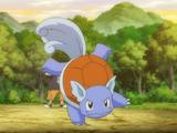 Ash's Blastoise (Forever)