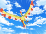 Ash's Moltres (Tom's Version)