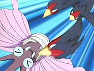Ash Swellow Peck