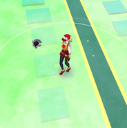 Map View Gastly render failure