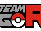 Team GO Rocket
