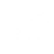 TodayView Icon BattleFriend