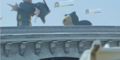 Gyarados-Snorlax-Battle