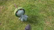 Waltz with Ralts into August Community Day!