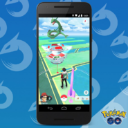 Rayquaza Tip
