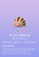 Swinub Pokedex