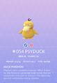 Psyduck Pokedex