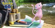 Researching Mew