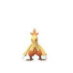 Combusken female.png