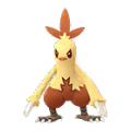 Combusken shiny.png