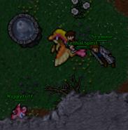 Clefairy quest 1