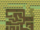 Pantano Swamp