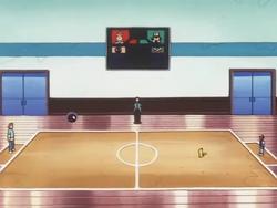 Ecruteak Gym Battlefield.png