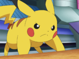 Pikachu Asha