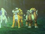 Legendarne bestie (film 13)