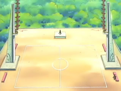 Fortree Gym Battlefield.png