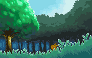 HGSS Viridian Forest-Morning