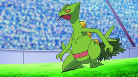 Ash Sceptile.png