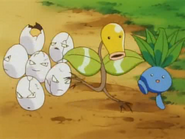 Celadon Gym Exeggcute Bellsprout Oddish