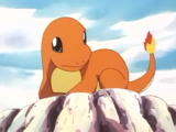 Charmander, o Pokémon Perdido